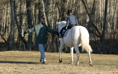 Hippotherapy Given on Sand or at Fast Pace Likely Best for Child's Posture Control, Study Says