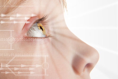 eye tracking language