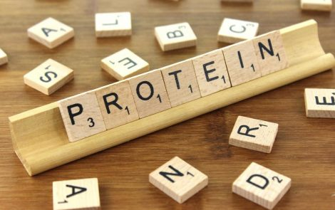 Changes in Protein Intake May Support Skeletal Muscle Growth in CP Kids