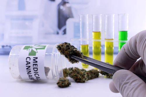 Cerebral Palsy Approved for Patient Medical Marijuana Use in Michigan